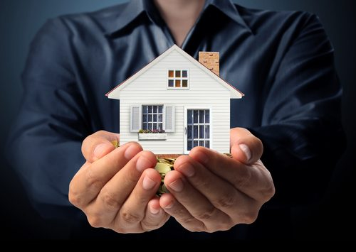 Protect your Investment Properties from Pests